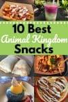 10 Best Animal Kingdom Snacks collage for pinterest
