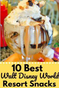 10 Walt Disney World Resort snacks