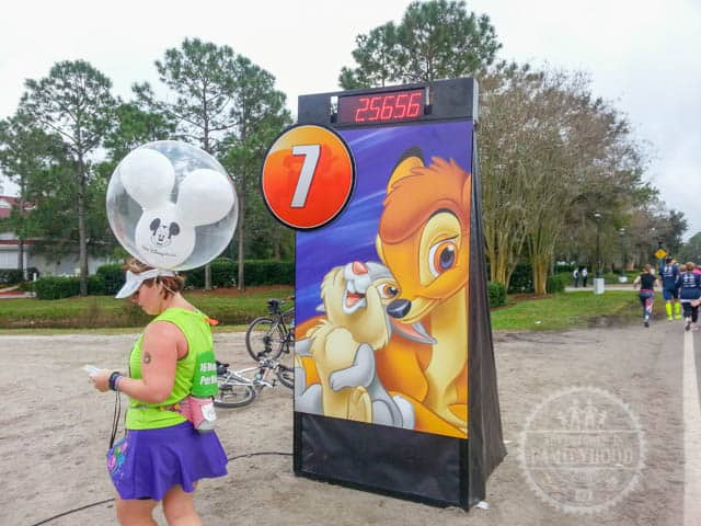 Mile Marker 7 of 2014 runDisney Walt Disney World Half Marathon
