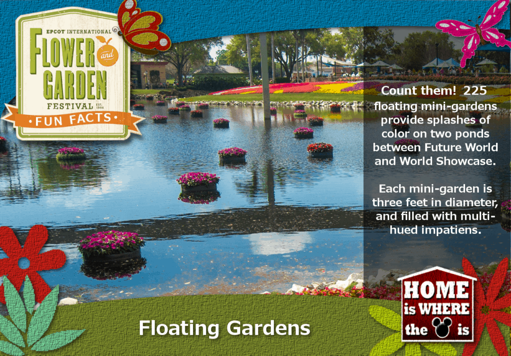 Epcot Flower & Garden Festival Fun Fact Floating Gardens