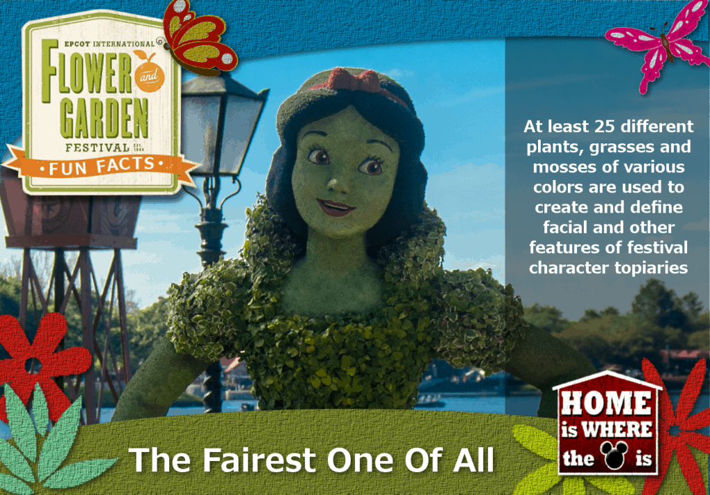 Epcot Flower & Garden Festival Fun Fact Snow White