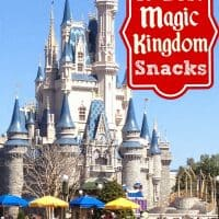 10 Best Magic Kingdom Snacks