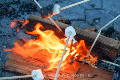 Roasting marshmallows at Disney's Contemporary Resort