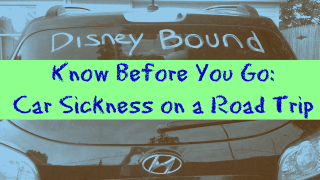 How to Handle Car Sickness on a Road Trip