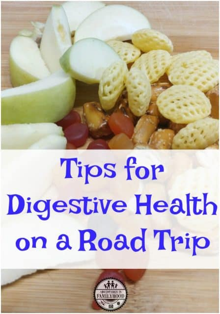 tips for digestive health on a road trip