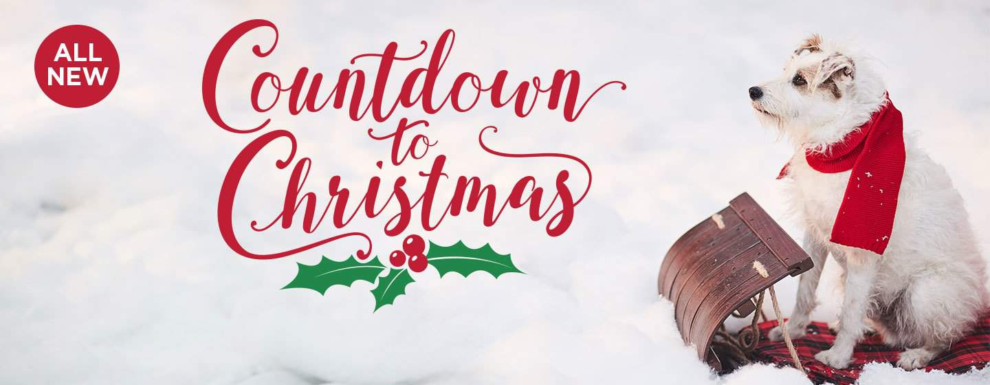 Guide to All Things Hallmark Channel Christmas Movies | Christmas 2018