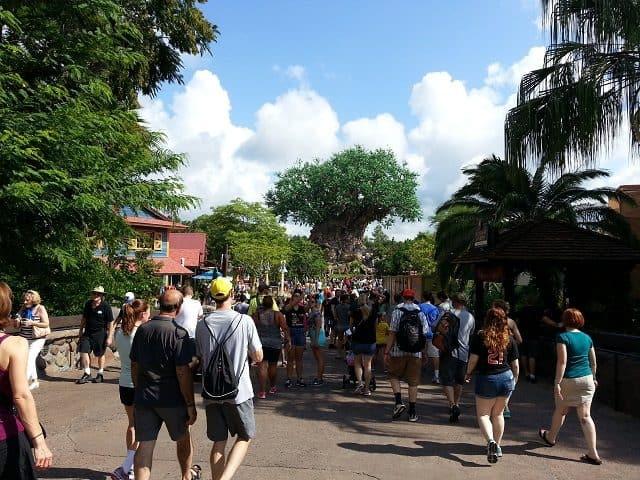 Crowds at Disney's Animal Kingdom