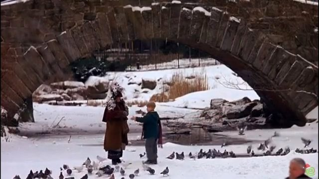 Ending scene of Home Alone 2 with characters at duck pond in front of Gapstow bridge