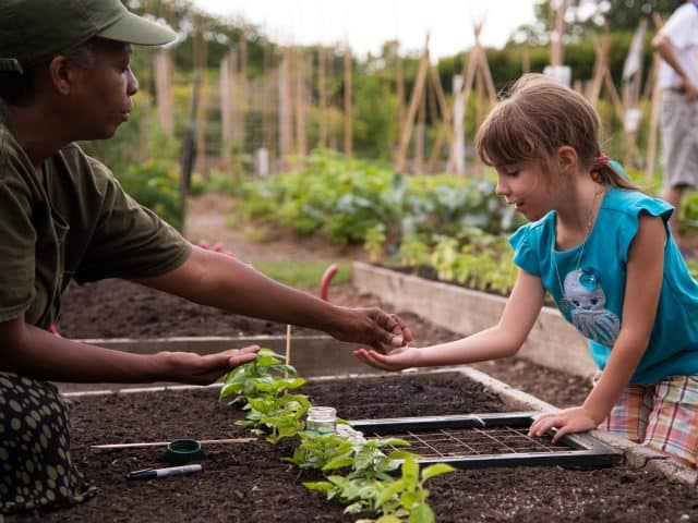 Child helping to plant seeds in the vegetable garden during Spring program at the New York Botanical Garden Edible Academy