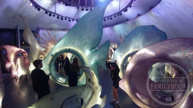 Inside the Sea Glass Carousel with its light-up fish in New York City at night
