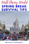 spring break survival at disney