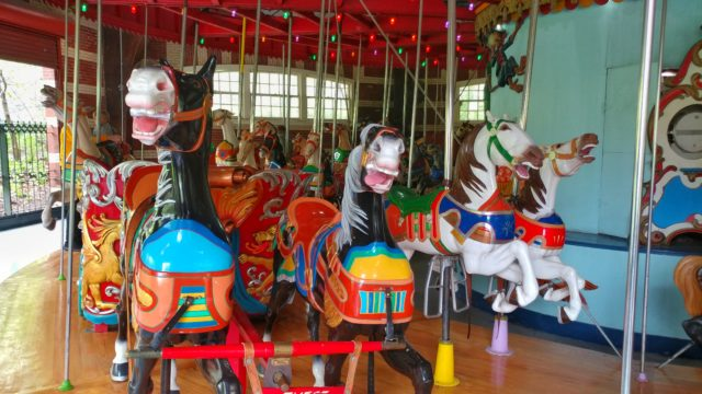 the central park carousel has four rows of horses