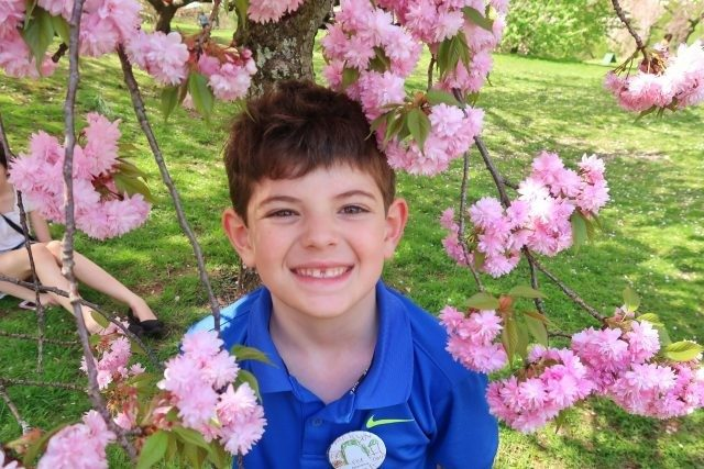 Jackson smiles through a branch of cherry blossoms at the New York Botanical Garden