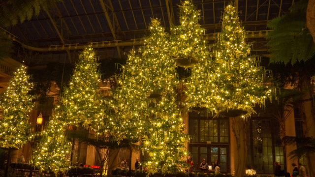 Longwood Gardens Floating Trees