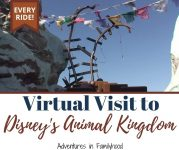 virtual visit to Disney's Animal Kingdom